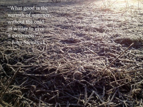 I try to keep this quote in mind when my fingers are not functioning properly and the garden beds are crispy, solid, and completely unworkable.