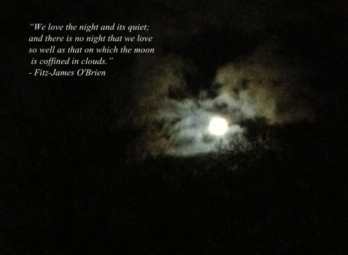 """We love the night and its quiet; and there is no night that we love so well as that on which the moon is coffined in clouds.""  ― Fitz-James O'Brien"