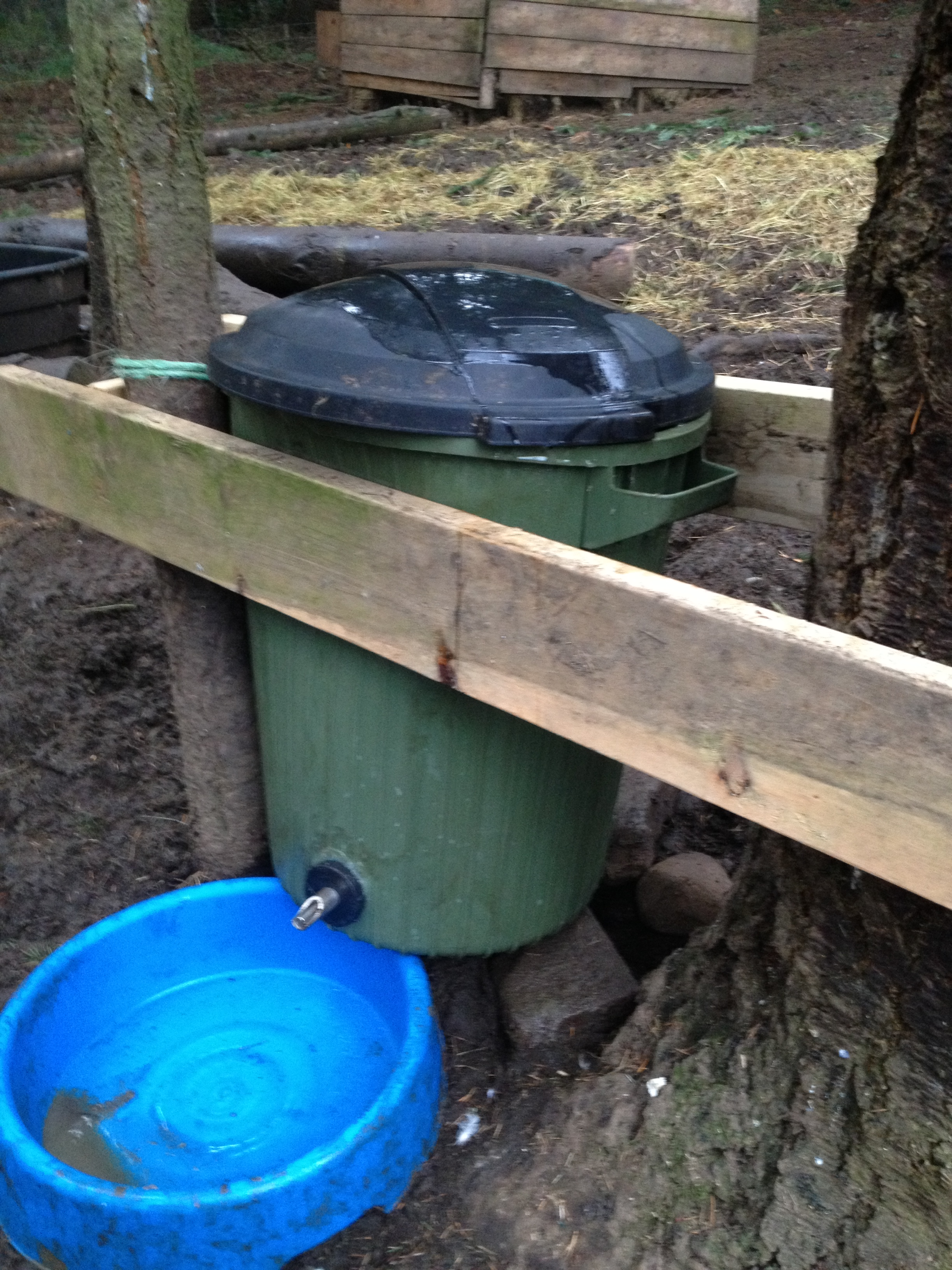 NABLOPOMO – How to Make a Hog Waterer from a Garbage Can