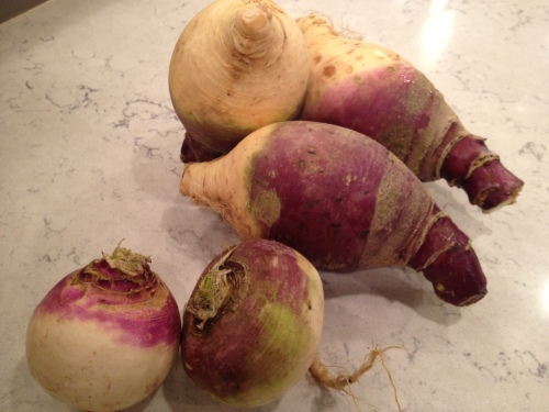 Turnip v rutabaga - discrimination test - which is which?