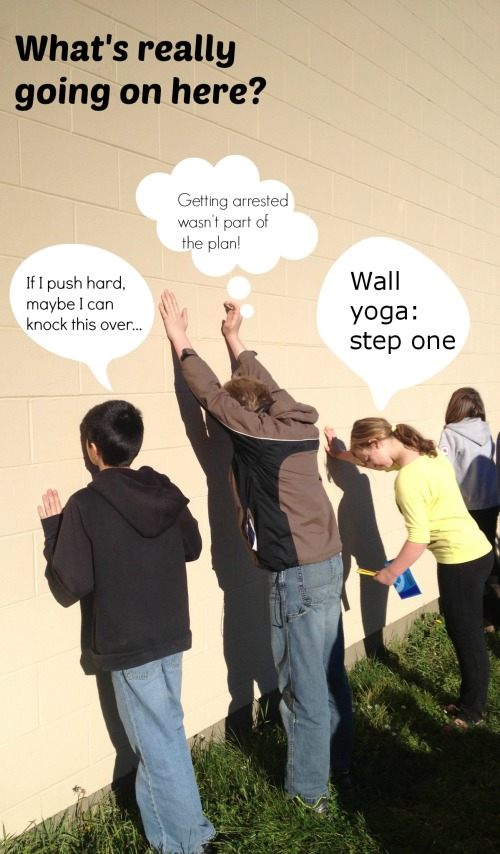Shoreline Wall