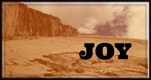 joy title 03 framed