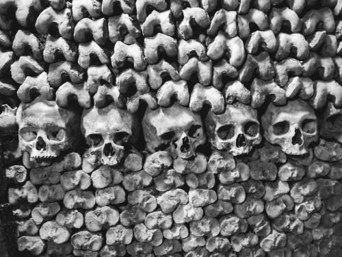 P6029065 skulls.JPG