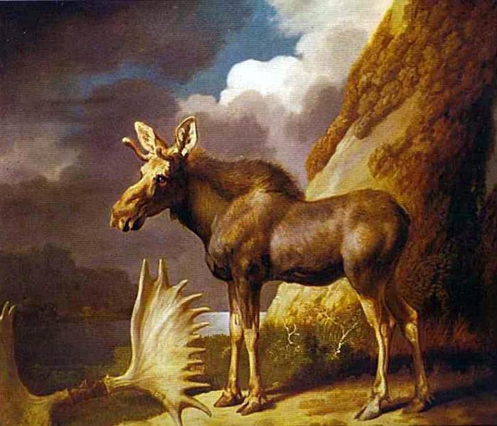 George Stubbs 1773 the-moose.jpg!Large