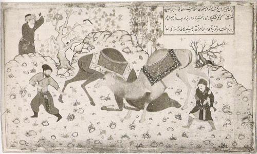 Two camels fighting Kamal ud-Din Behzad, 1530 von-behz-d-signiertes-bild-das-oft-kopiert-und-nachgeahmt-wurde-1.jpg!Large